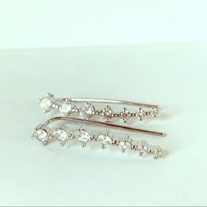 Jewelry - Winged Long Crystal Silver Tone Earrings